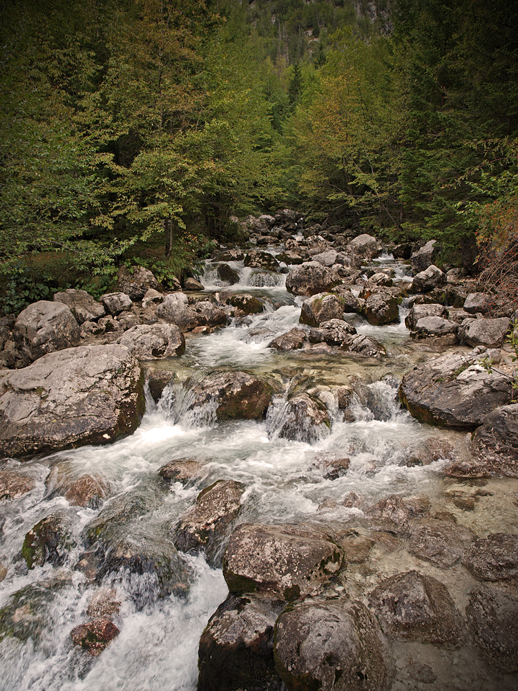 Near Soča Source